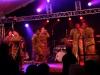 Army-Band-Winzerfest (13)