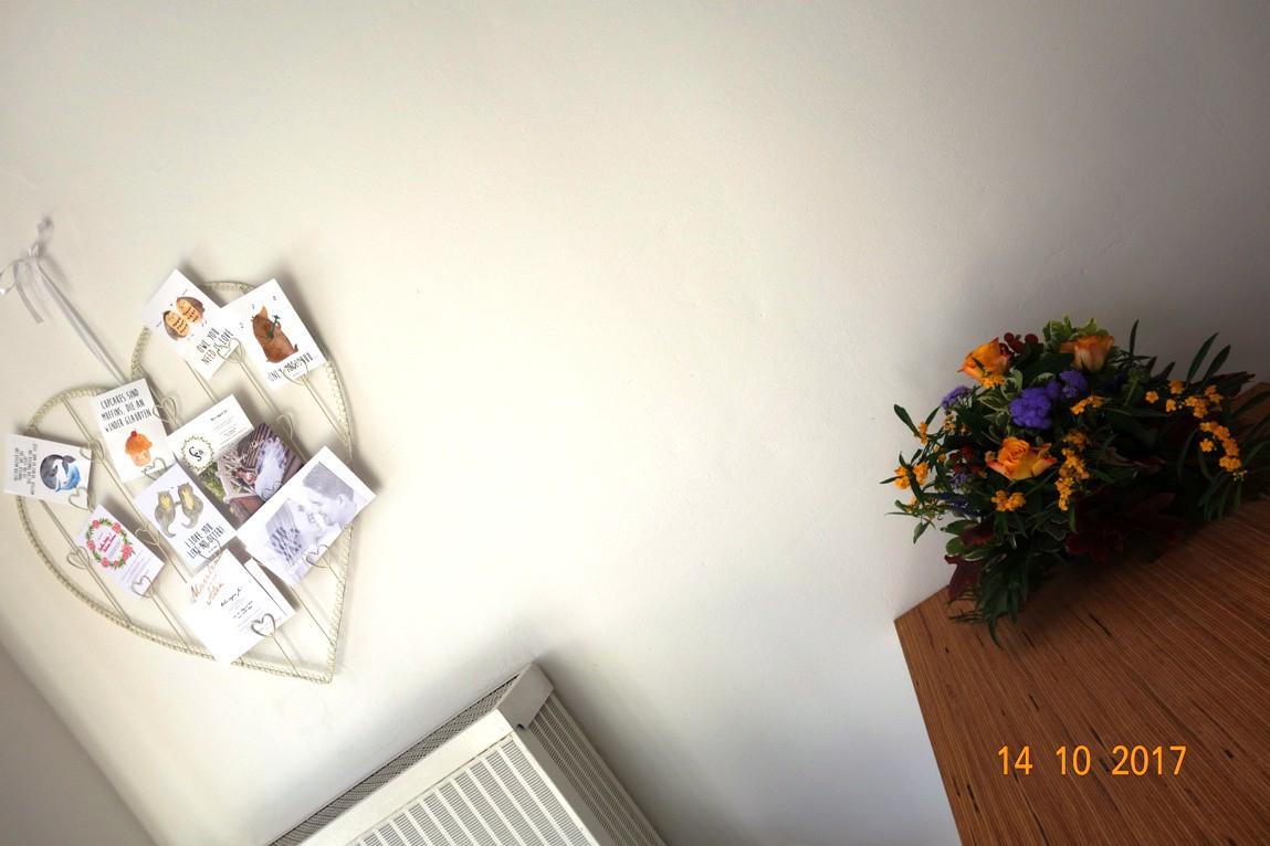 neuer ffnung walldorf hat wieder ein fotostudio wiwa. Black Bedroom Furniture Sets. Home Design Ideas
