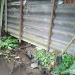 Beseitigung von nicht zulässigem Uferverbau