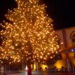 Der Walldorfer Weihnachtsmarkt erstrahlt mit vielen Lichtern