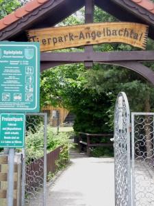 Rauenberg Spielplatz 001