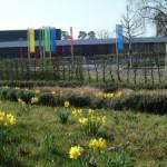 Heute: Frühjahrskonzert der Stadtkapelle Walldorf