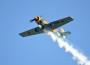 Aero-Club: Walldorfer Flugtage begeistern die Zuschauer