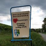 1. Rauenberger Weinwanderung