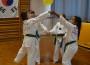 TAE-KWON-DO Jugendteam in Topform