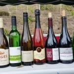 1. Rauenberger Weinwanderung – Ein voller Erfolg