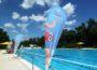 """Viele kleine """"Dories"""" bei Disneys Schwimm-Spaß-Tour im AQWA Walldorf"""