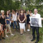 Waldschule Walldorf: Licht für den Maulbeerbuckel