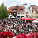 Wieslocher Winzerfest 2016