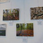 Ausstellung in der Stadtbücherei Walldorf: Siegerfotos des Fotowettbewerbs Schwetzinger Hardt