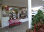 50 Jahre Astoria-Apotheke – Die gibt es nur einmal!