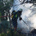 Brennende Gartenabfälle – nur unter bestimmten Bedingungen erlaubt