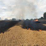 Wiesloch – Strohballen geraten in Brand
