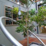 Walldorf: Grundbucheinsichtstelle aktiv