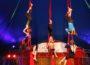 Zirkus Sorriso heute und morgen