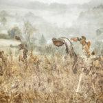 Photomorphosis – Landschaftsbilder aus der Region im BÜTZ