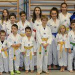 Wieslocher TAE-KWON-DO Team erkämpft  12 Medaillen