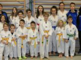 Wieslocher TAE-KWON-DO Team erkämpft  12 Medaillen