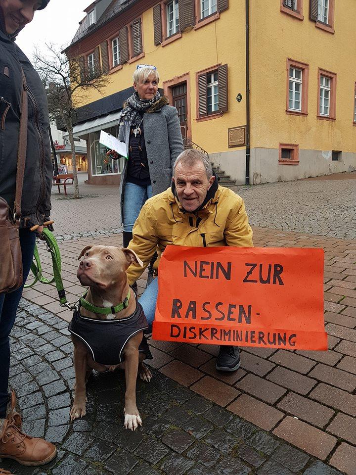 freie tierarztstellen bw