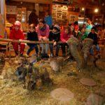 Forstbewirtschaftungs- und Betriebsplan für 2018 verabschiedet
