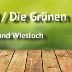 Grüne Fraktion stellt Vorwürfe von OB Elkemann richtig