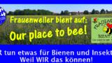 Heute Sommertagsumzug in Frauenweiler