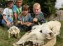 Tierischer Ferienspaß mit der Heidelberger Zooschule