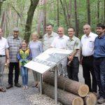 """Erlebnisstation im """"Urwald von morgen"""""""