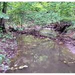 Gewässer leiden unter Trockenheit – keine Wasserentnahme