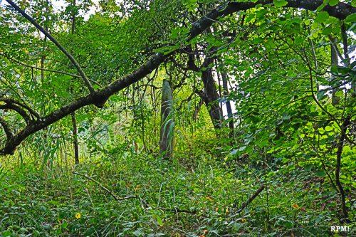 Menhir von Schatthausen