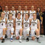 Wild Bees – Basketball-Regionalliga Damen: Auswärtssieg zu Weihnachten!