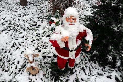 Der erste Schnee – Hoffnung auf weisse Weihnachten – Grosse Fotostrecke
