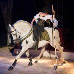 Circus Gebrüder Barelli vom 14. bis 17. März in Wiesloch