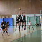 Volleyball Spielberichte TSG Wiesloch