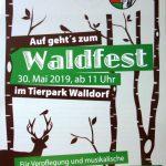 Wohin am Vatertag: Natürlich zum Waldfest der Stadtkapelle Walldorf