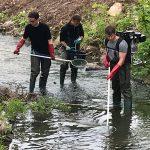 Fische und Krebse am Waldangelbach im Bereich der Baustelle abgefischt