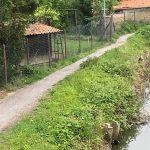 Wiesloch: Fußweg am Waldangelbach wird gesperrt