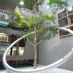 Walldorf: Rathaus und Wohnungswirtschaft zu