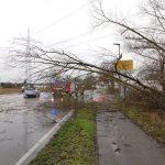 Wiesloch/Dielheim/Bammental: Sturm fordert Einsatzkräfte – Wetterwarnung besteht weiterhin