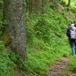 Männerpilgern im Nationalpark Schwarzwald