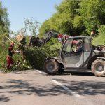 Sturm im Raum Wiesloch – Blockierte Straßen mancherorts