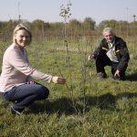 Umfangreiche Baumpflanzaktionen im Roter Bruch und Reilinger Eck