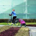 Der Fahrrad-Shopper als klimafreundlicher Einkaufsbegleiter