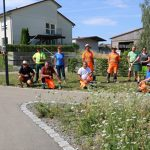 """""""Natur nah dran"""": Wieslocher Delegation pflegt Blühflächen für Wildbienen und Schmetterlinge"""